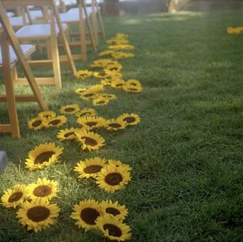 The Aisle of Andrew's wedding